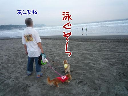 001_20110827235159.jpg