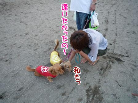 006_20110827235159.jpg