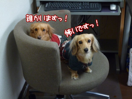 019_20111208214402.jpg
