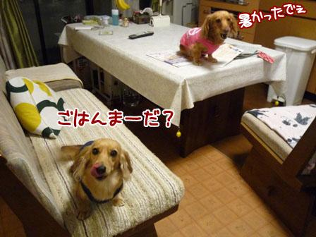 007_20111025223149.jpg