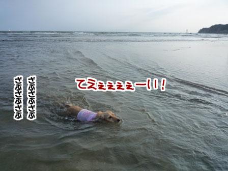 020_20110724225650.jpg
