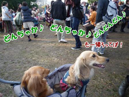 028_20111114204245.jpg