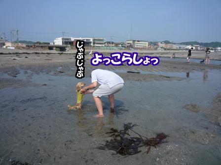 122_20110607221246.jpg