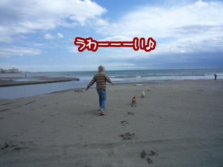 012_20110530231014.jpg