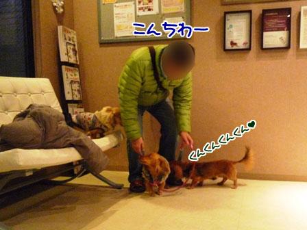 036_20111230012156.jpg