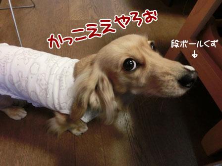 007_20121227004441.jpg