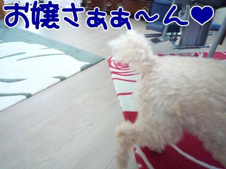 036_20110924235236.jpg