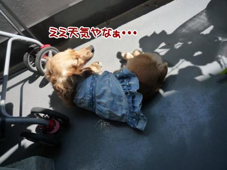 022_20120626225242.jpg