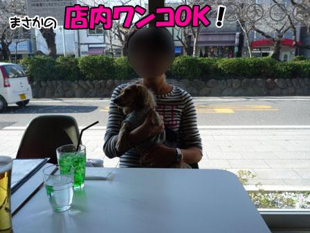 017_20111124214015.jpg