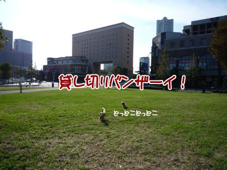 064_20110929233856.jpg