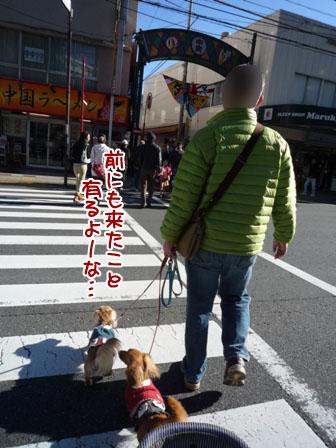 005_20111204235703.jpg