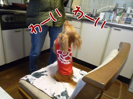 010_20111202225222.jpg