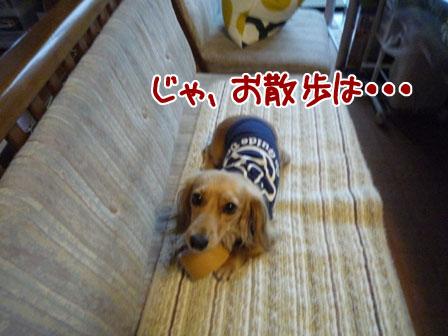 003_20110803150953.jpg