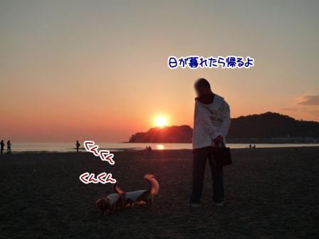 006_20111031225242.jpg