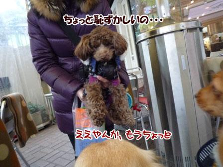 024_20120119235841.jpg