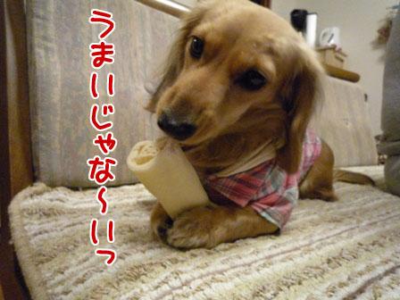 019_20110126224417.jpg