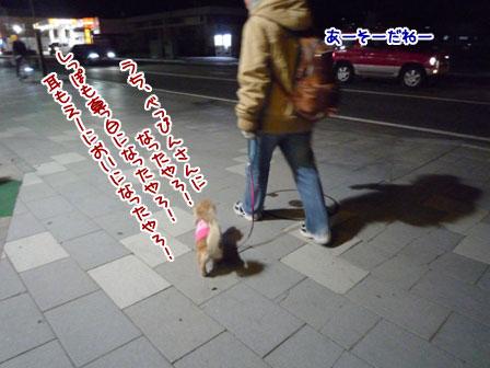 004_20111228234641.jpg