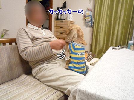005_20111122231250.jpg