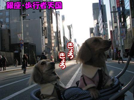 001_20101227000243.jpg