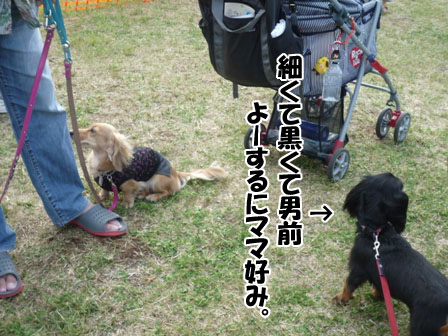 047_20110926225303.jpg