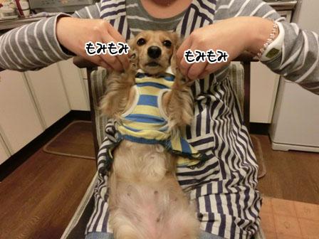 020_20121120232945.jpg