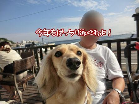 009_20130602235306.jpg