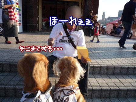 040_20111030132957.jpg