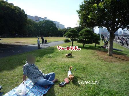 020_20110926224245.jpg