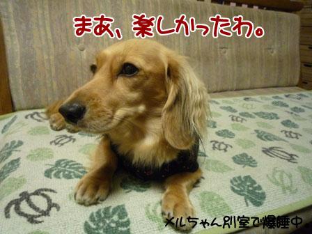 051_20110926231148.jpg