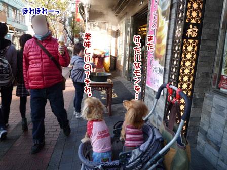 023_20111212011025.jpg