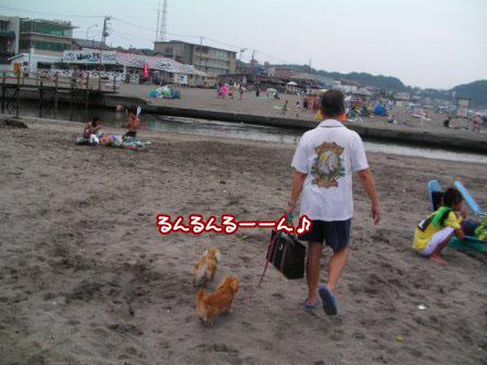 011_20110807234037.jpg