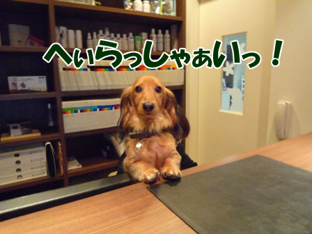030_20111230012157.jpg