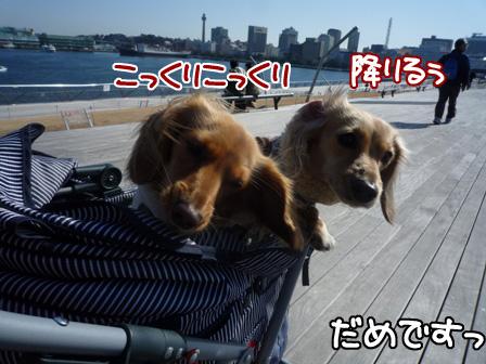 055_20110305225552.jpg