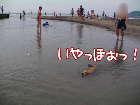 020_20110807234034.jpg