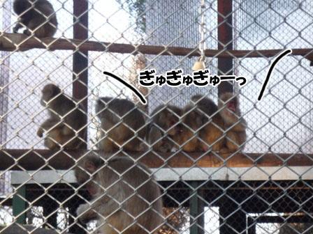 072_20120130222627.jpg