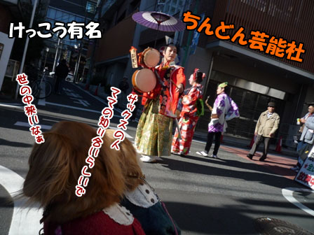 029_20111204235703.jpg