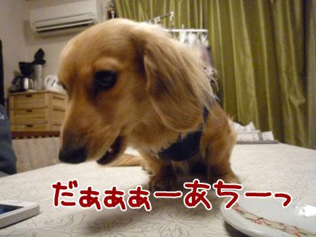 013_20120227213801.jpg
