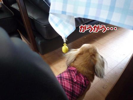 001_20120727235613.jpg