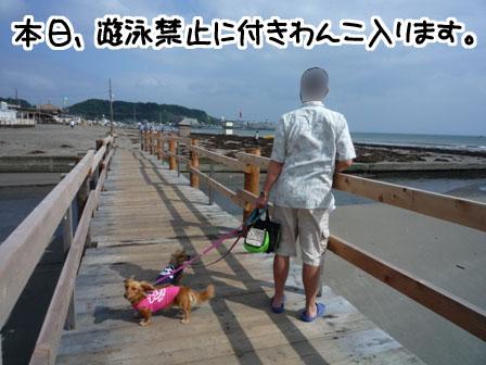 058_20110721230750.jpg
