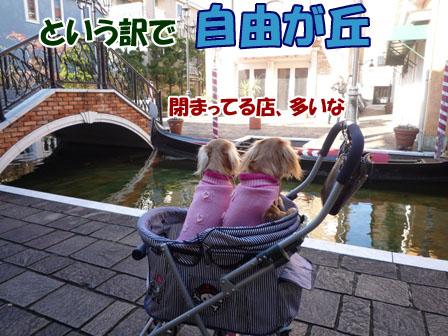 023_20101211213111.jpg