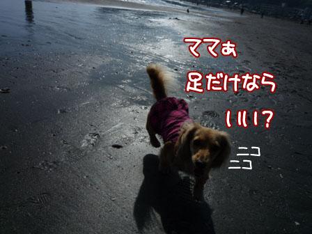 011_20120429002237.jpg