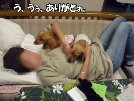 003_20101125175708.jpg