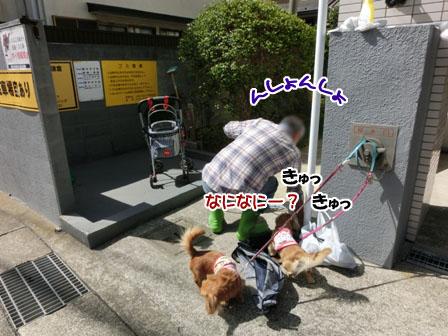 001_20130321211630.jpg