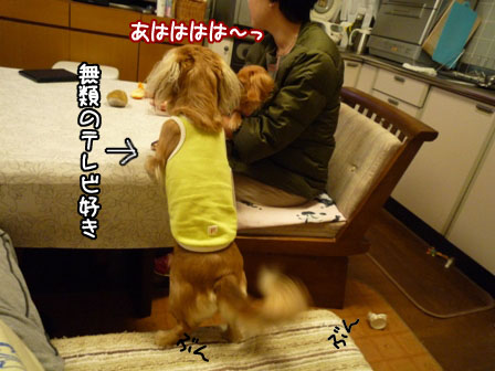 012_20111119232012.jpg
