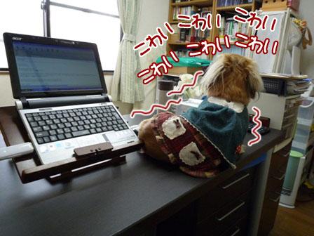024_20111208214402.jpg