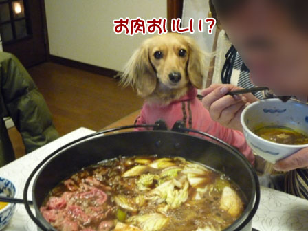 024_20120115232206.jpg