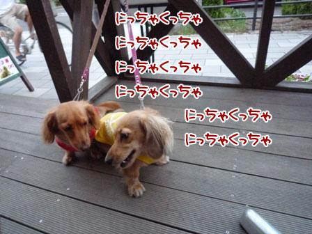 002_20110825225058.jpg