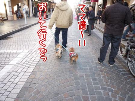 001_20110108234037.jpg