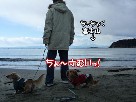 030_20110130213807.jpg