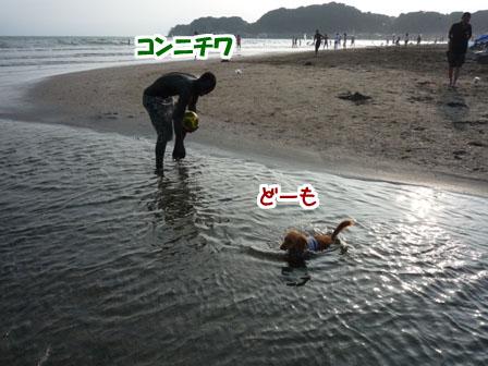 006_20110724225653.jpg